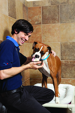 One Day Sale: 50% Off Select Furminators + Free Shipping on $49+ at PetSmart! Valid 6/26.