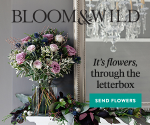 bloom and wild