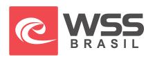 websurfshop.com.br